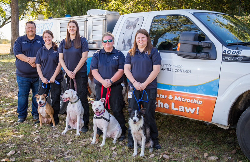 Animal Care Officers