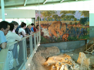 Waco Mammoth Site public tour